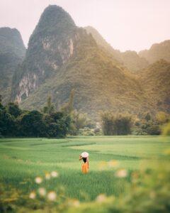 prato verde con montagne sullo sfondo